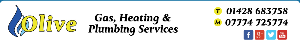 Olive Gas Engineer